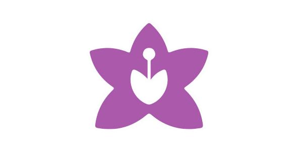 Amielle Comfort vaginal dilators